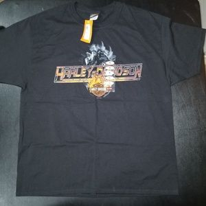 Harley Davidson Cape Town South Africa tee
